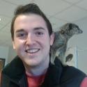 Meerkats Cropped 1